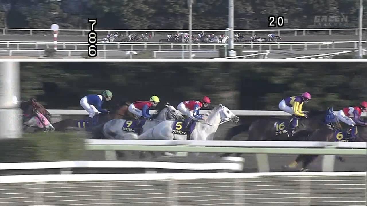 2013 東京スプリング盃(フジノ...