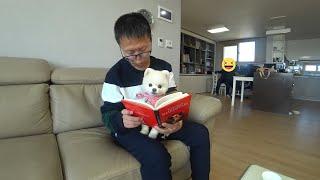강아지 꾼이는 동화책 왕첸은 영어책 피터팬 (2) Re…