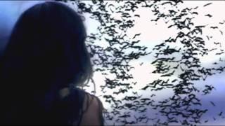 Redbone - Beautiful Illusion (HD)
