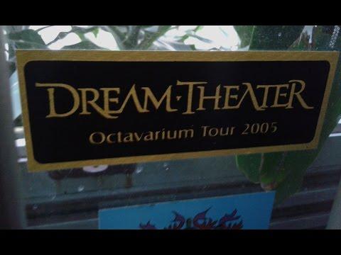 Eduardo Ladeira - I Walk Beside You (Dream Theater)