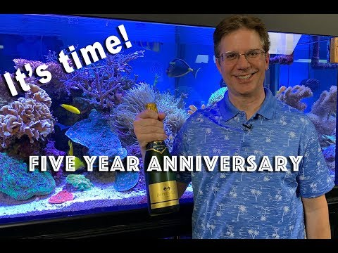 5th anniversary of my 400g reef