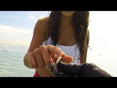 Rings in the Rocks - Metal Detecting on Miami Beach