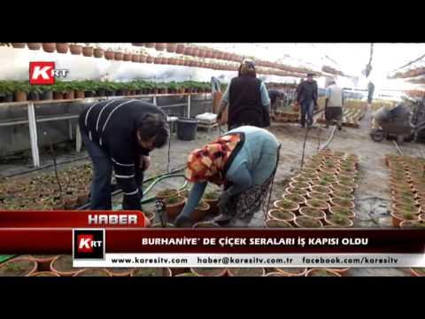 Burhaniye' De Çiçek Seraları İş Kapısı Oldu