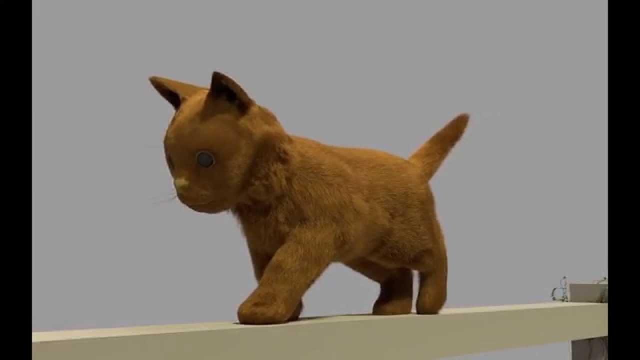 Kitty In A Blender ~ Cat spin fur render test from blender youtube