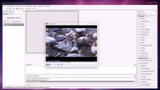 DevelStudio Component: MediaPlayer