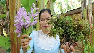 Awesome Cooking Neem Flower W/ Tamarind Sauce Recipe - Show Eating Delicious  - Primitive Technology