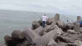 Pescando en las escolleras de Tuxpan Veracruz