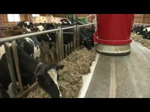 Lely Vector - Experience (Nederlands)