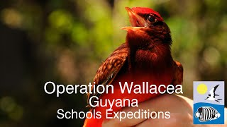 Operation Wallacea - Guyana Schools Expeditions