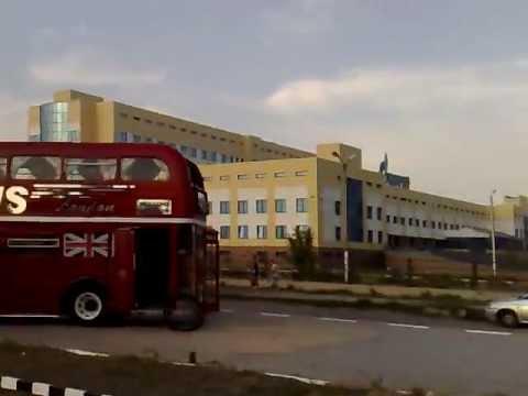 Автобус из Лондона специально для Динары Гиматовой.