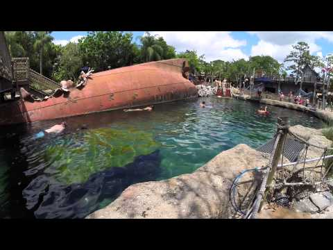 Shark Reef Viewpoints at Disney's Typhoon Lagoon (2015)