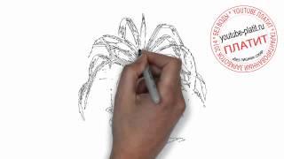 Как нарисовать красивую вазу с цветами(Как нарисовать картинку поэтапно карандашом за короткий промежуток времени. Видео рассказывает о том,..., 2014-07-02T17:19:07.000Z)