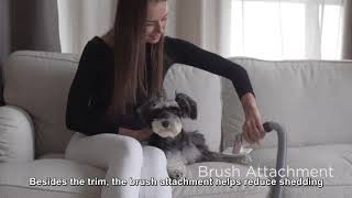 Groomrade: Smart & Mess-Free Vacuum Dog and Cat Groomer - Clean Dog and Cat Grooming on IndieGoGo