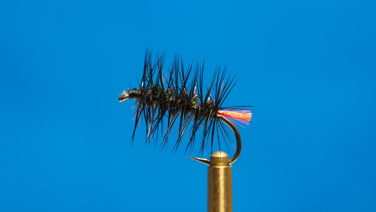 Fly Tying  Red Tag Palmer  YouTube