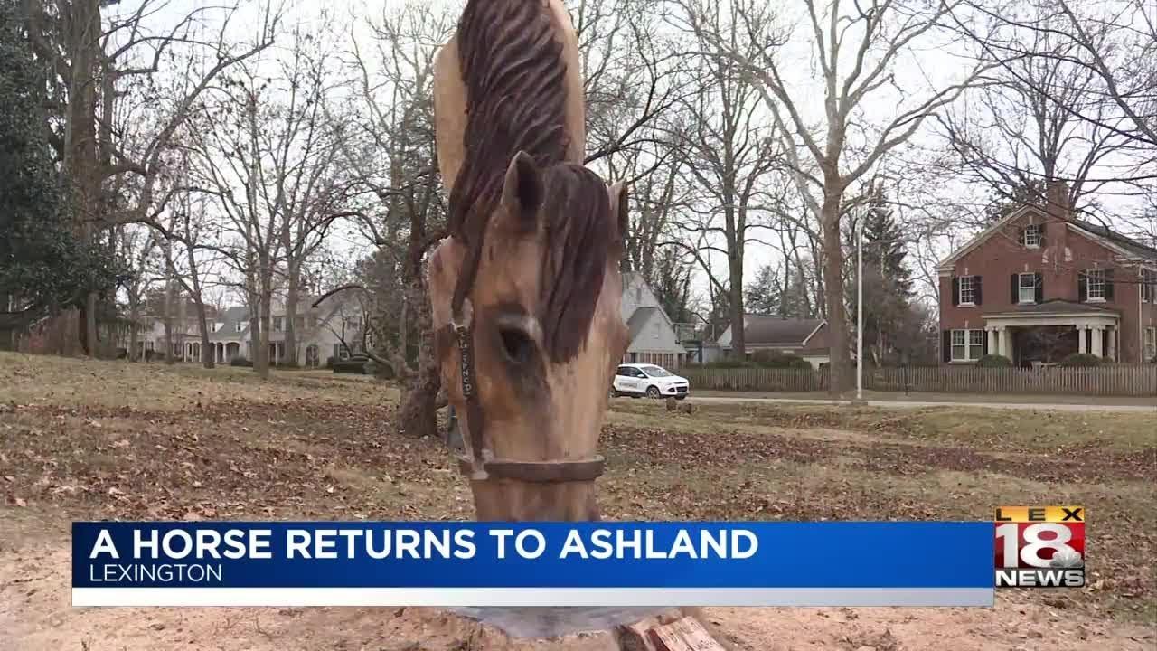 Visual artist creates horse portrait from stump at ashland lex
