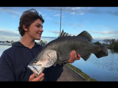Barramundi Fishing - Catching HUGE Fish!