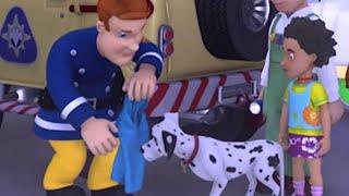 Feuerwehrmann Sam 🔥Nachtrettung mit den Hunden!  🚒Zeichentrick für Kinder