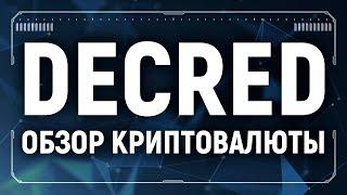Decred обзор криптовалюты