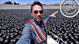 Veritasium: 96000000 чёрных шаров на водохранилище