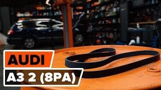 Kā nomainīt Ķīļrievu siksna AUDI A3 Sportback (8PA) - video ceļvedis