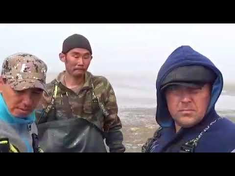 Браконьеры на Рыбновском побережье в Охе