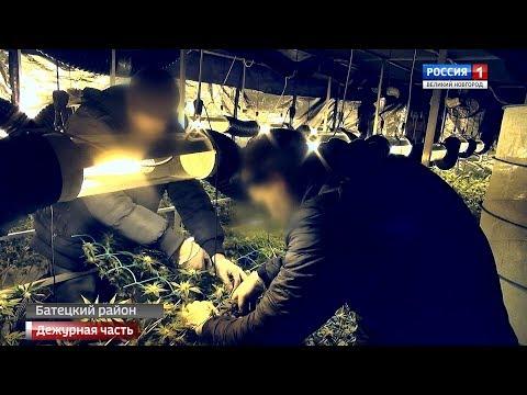 ГТРК СЛАВИЯ Вести Дежурная часть 24 11 19