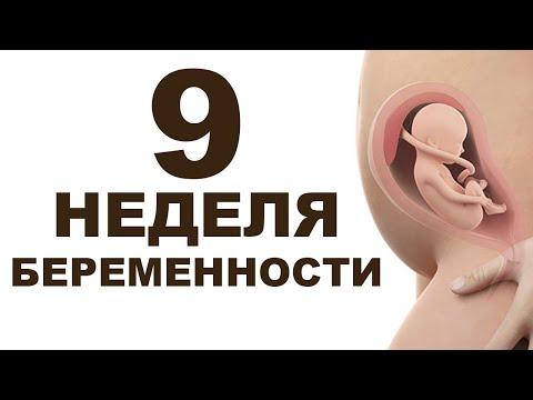 Что происходит с мамой и ребёнком на 9 неделе беременности?