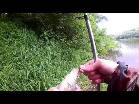 фидерист ловля на фидер р дон видео