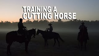 Training a Cutting Horse  MAKING THE CUT | Low Country Cowboys Episode Three