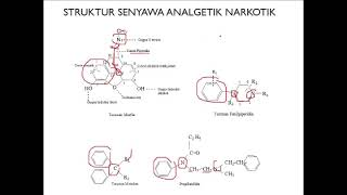 Farmakologi II: Pertemuan 4 (Antimalaria).