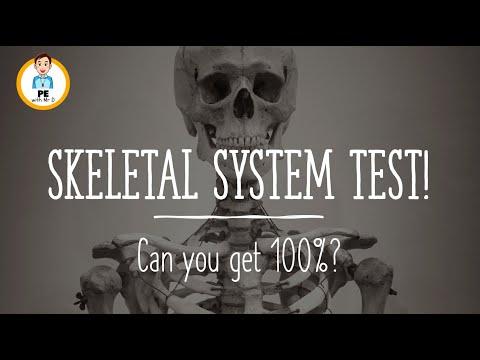 ANATOMY QUIZ: Bones of the Skeletal System! Can you get 100%?