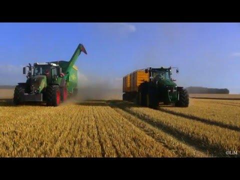 Getreideernte Thüringen XXL