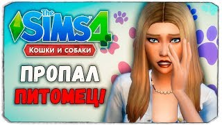 """100 ПИТОМЦЕВ - ПРОПАЛ ПИТОМЕЦ! - The Sims 4 """"Кошки и Собаки"""" ЧЕЛЛЕНДЖ"""
