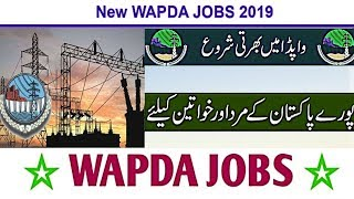 Wapda Jobs For Junior Engineer 2019 -Water & Power Development Authority-PTS application Form