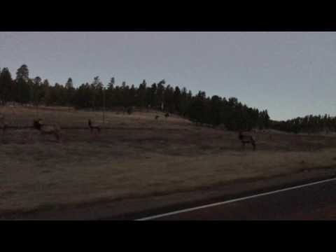 5AM Drive from Cloudcroft to Ruidoso, New Mexico