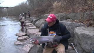 Drifting for Steelhead, Eighteen Mile Creek, Newfane, NY. Part 2 of 4