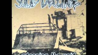 solid decline 01 - the windbag brigade