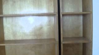 Bookcase Door 2
