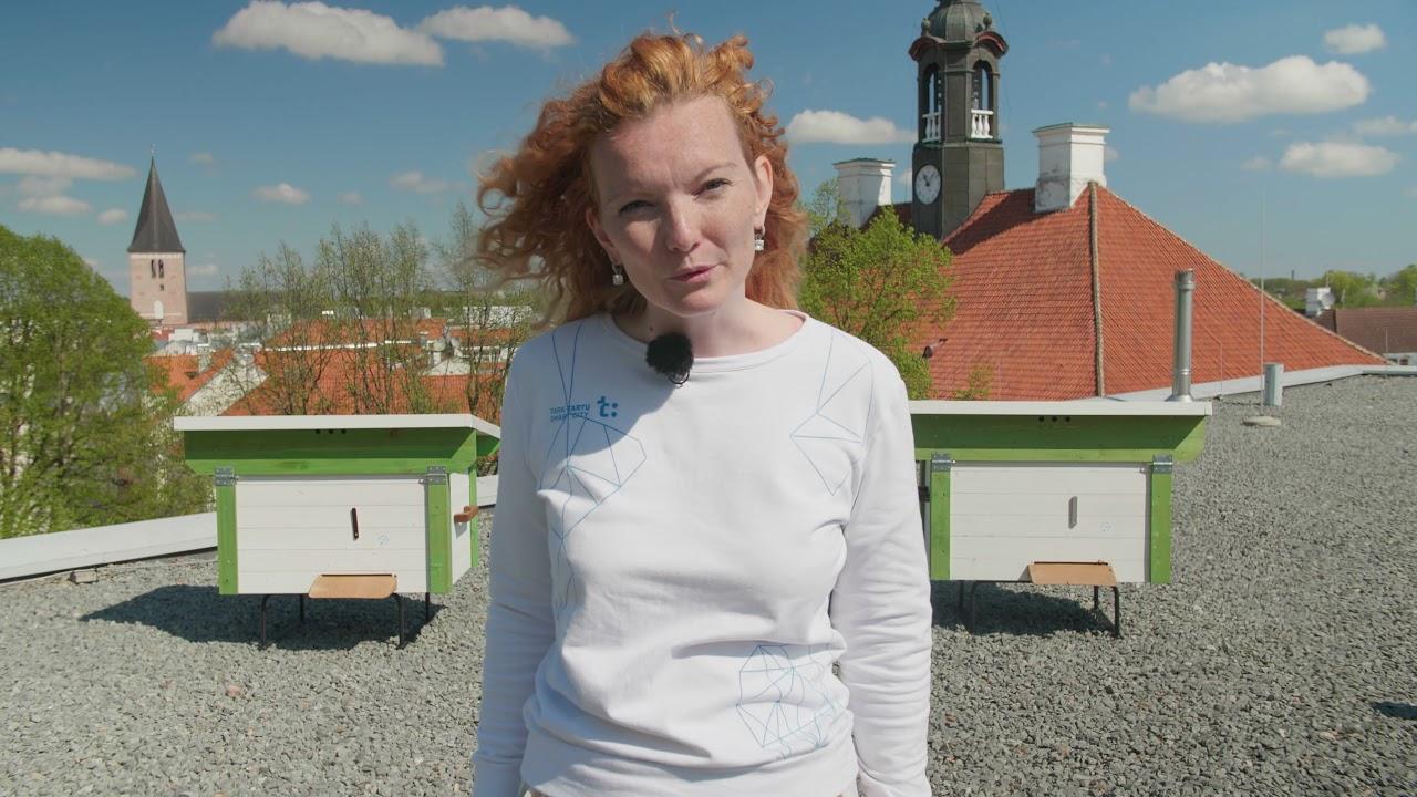 Different faces of Tartu