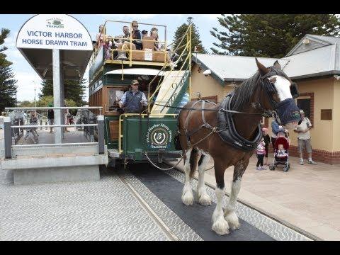 Victor Harbor horse-drawn tram, South Australia