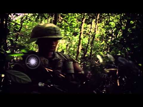 Soldiers of United States 25th Infantry Division conduct operation Wahiawa in Cuc...HD Stock Footage