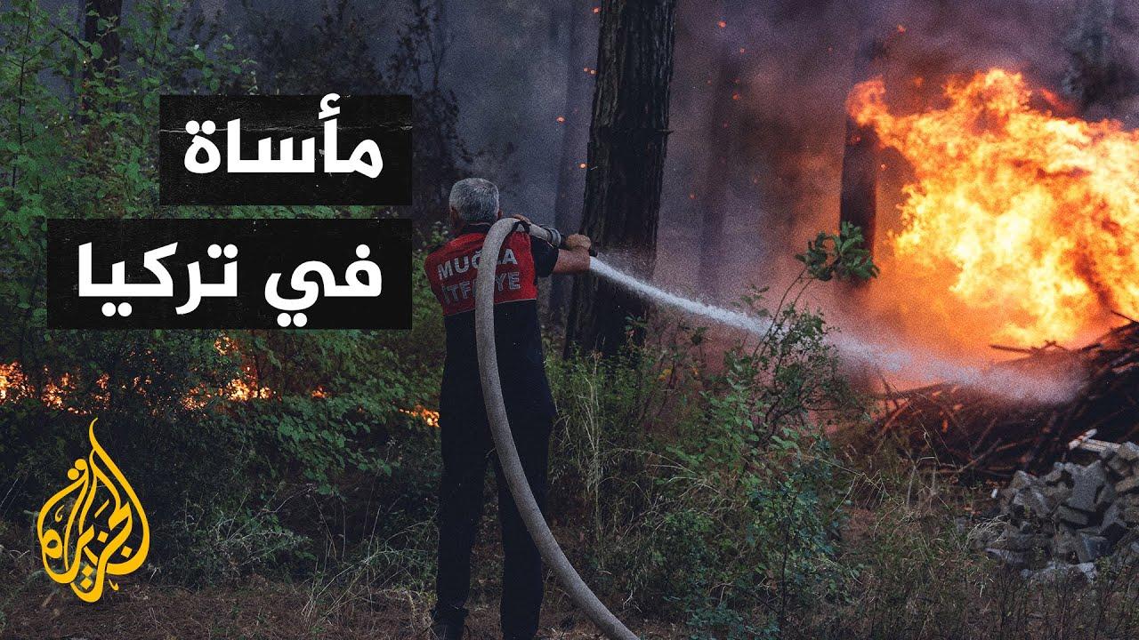 تضامن عالمي مع حرائق الغابات الضخمة في تركيا  - نشر قبل 3 ساعة