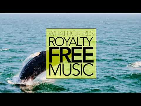 AMBIENT MUSIC _ _ ROYALTY FREE Download No Copyright Content | OPEN SEA MORNING