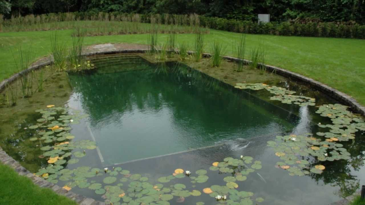Building a natural swimming pool - Building A Natural Swimming Pool 51