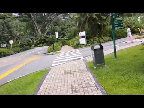 Singapore Botanik Bahçesi Neden Forever ?