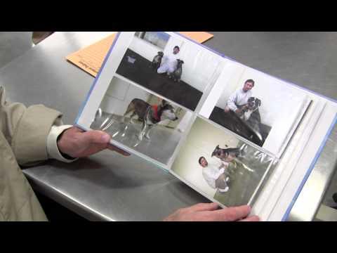 Dog Training Program Encourages Interaction, Changes Lives at Washington State Penitentiary