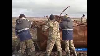 2017 -  год экологии(2017 год в России объявлен годом экологии. На Ямале уже готовят список первоочередных мероприятий., 2016-09-28T05:13:54.000Z)