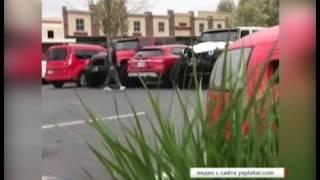 """""""Мастер парковки"""". Неопытного водителя научили парковать автомобиль правильно. ВИДЕО"""