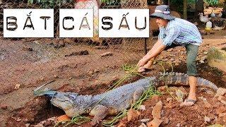 Bắt cá sấu xổng chuồng và cách vô hiệu hóa cá sấu (how to disarm and catch a crocodile)