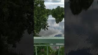 Немного расслабляющего видео о красоте русской природы. Лес, речка, разнотравье...